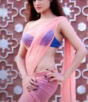 Housewife Escorts in Chandigarh